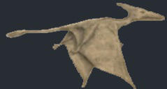 sketch of pterosaur seen in Cuba in 1971