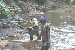 Texan Paul Nation crossing a river in New Guinea, searching for the ropen